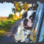 Guides on Pet Paintings for Beginners